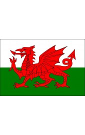 Wales Flagge