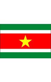 Suriname Flagge