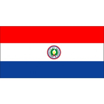 Paraguay Flagge